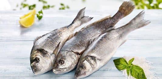 Su ürünleri ihracatında lider egeli balıkçılar