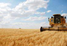 Gıda İthalat Vergisi Düşecek